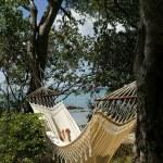 Beach front hammock — Stock Photo