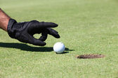 Hand placing golfball on green — Stockfoto