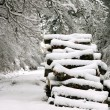 Snow covered firewood - Stock Photo