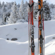 Skis in snow — Stock Photo #11486034