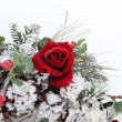 Winter Bouquet — Stock Photo