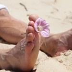 Flower between toes. — Stock Photo