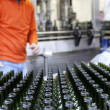 Wine bottling factory — Stock Photo