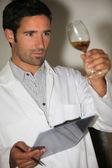Expert testing wine — Stock Photo