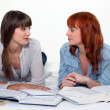 Stock Photo: Two female friends studying.