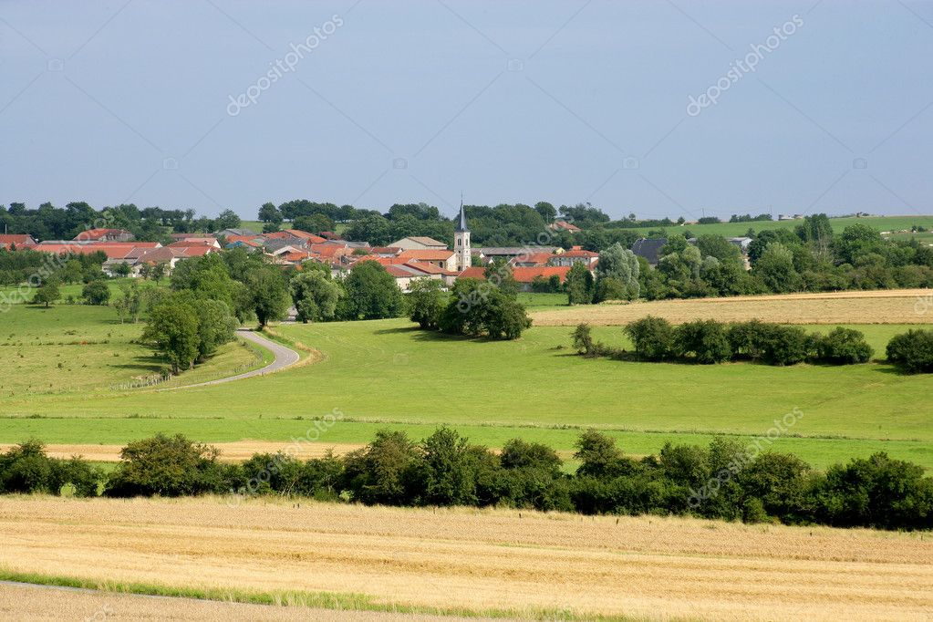 Countryside field — Stock Photo #11668129