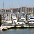 Busy marina — Stock Photo