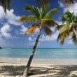 perfekta beach — Stockfoto #11671277