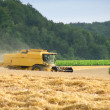 Stock Photo: Combine harvester