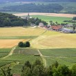 Village amongst crop fields - Foto Stock