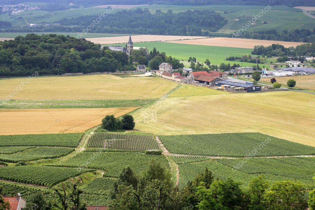 Village amongst crop fields — Stock Photo #11675850