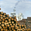 Logs at industrial plant — Stock Photo #11747001