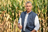 Experienced farmer standing in his field — Stock Photo