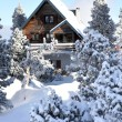 Mountain chalet — Stock Photo #11750134