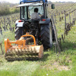 Stock Photo: Tractor in vineyard