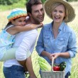 Family in a field — Stock Photo