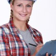 Site inspector — Stock Photo