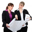 Stock Photo: Two female architects