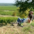 Stock Photo: Couple having picnic in the vineyard