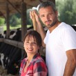Man and woman farmers taking care of their cattle - Stock Photo