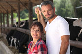 Man and woman farmers taking care of their cattle — Stock Photo