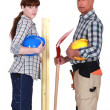 Bricklayer and carpenter — Stock Photo
