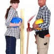 Bricklayer and carpenter — Stock Photo #11846065