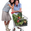 Portrait of couple with shopping cart — Stock Photo #11847155