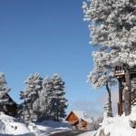 A winter wonderland — Stock Photo
