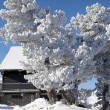Winter holiday home — Stockfoto