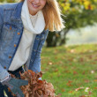Smiling girl collecting leaves — Stock Photo #11847698