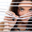 A cute brunette spying through the blinds. — Stock Photo