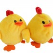 Stuffed chick toys — Stock Photo #11847841