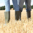 Couple stood in field - Stock Photo