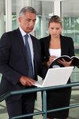 Businessman and businesswoman verifying data — Stock Photo
