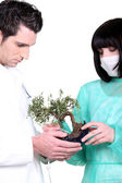 Two doctor with banzai tree — Stock Photo
