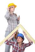 Two female carpenters — Stock Photo