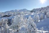 如诗如画的冬季现场 — 图库照片
