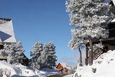 Ein Winterwunderland — Stockfoto