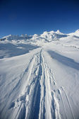 Ski traces in the snow — Stock Photo