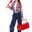 Female DIY fan with tool-kit — Stock Photo #11854726