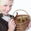 Woman with basket of chestnuts - Stockfoto