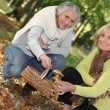 Stock Photo: Two women gathering mushrooms