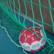 Handball in net — Stock Photo #11892334