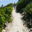 Stock Photo: Coastal path