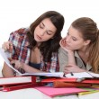 Two female students — Foto Stock