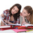 Two female students — Stock Photo #11898889