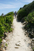 Coastal path — Stock Photo