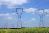 Electricity pylons in a field — Stock Photo