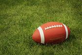 Calcio sull'erba verde — Foto Stock